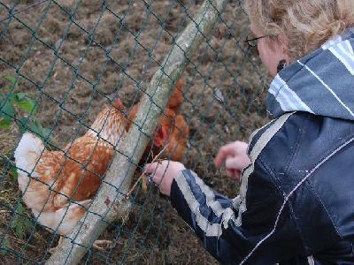 Das Bild Dorfaktionstag2012DSC_0208.JPG vergrössern