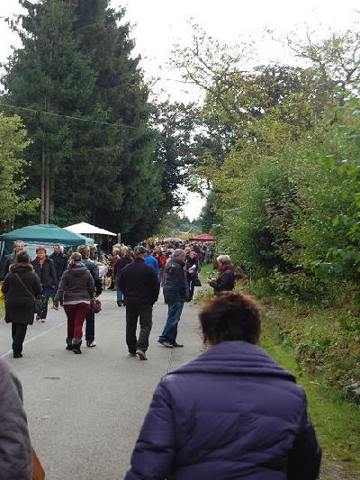 Das Bild Dorfaktionstag2012DSC_0292.JPG vergrössern
