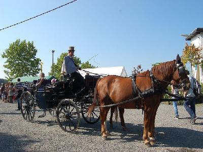 Das Bild Dorfaktionstag2011DSC_0018.JPG vergrössern