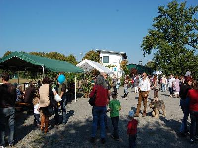 Das Bild Dorfaktionstag2011DSC_0019.JPG vergrössern