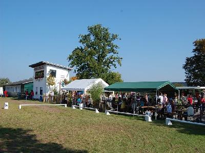 Das Bild Dorfaktionstag2011DSC_0021.JPG vergrössern