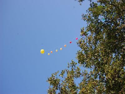 Das Bild Dorfaktionstag2011DSC_0042.JPG vergrössern