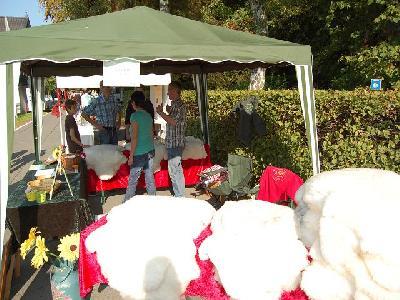 Das Bild Dorfaktionstag2011DSC_0129.JPG vergrössern