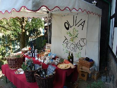 Das Bild Dorfaktionstag2011DSC_0221.JPG vergrössern