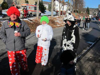Das Bild Karneval2013IMG_0591.JPG vergrössern
