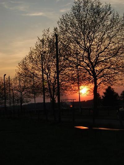Das Bild Osterfeuer2011DSC_0285.JPG vergrössern