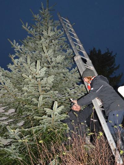 Das Bild Weihnachtsbaum2014DSC_0063.JPG vergrössern