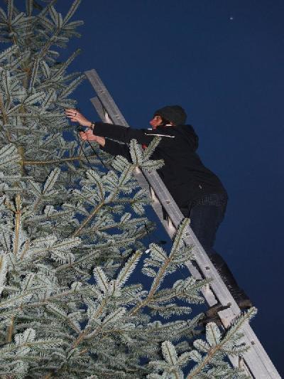 Das Bild Weihnachtsbaum2014DSC_0065.JPG vergrössern