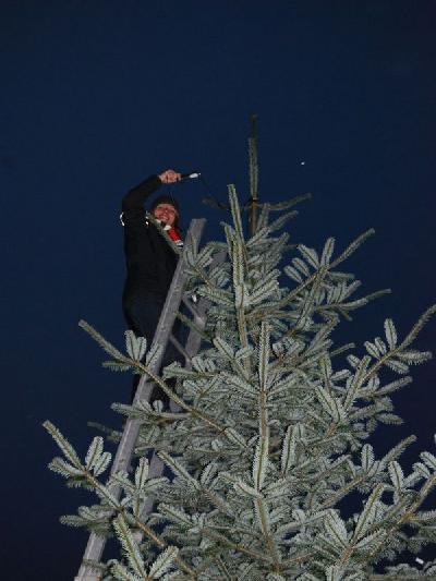 Das Bild Weihnachtsbaum2014DSC_0066.JPG vergrössern